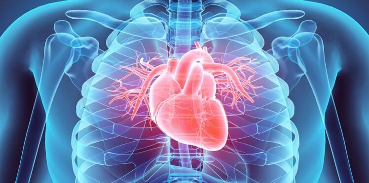 Maladies cardio-vasculaires : du nouveau contre les récidives