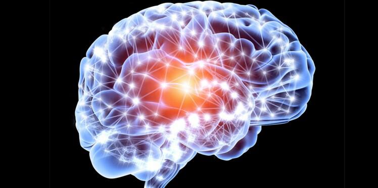 Bientôt des stents dans le cerveau pour éviter l'AVC ?