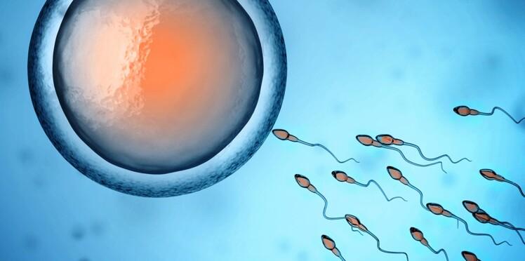 Don de sperme sauvage : une pratique surprenante et taboue
