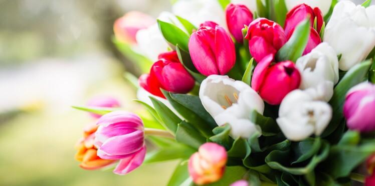 5 astuces pour faire durer son bouquet de fleurs