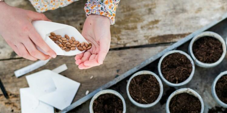 Jardin : 4 bons plans pour dénicher des graines gratuites
