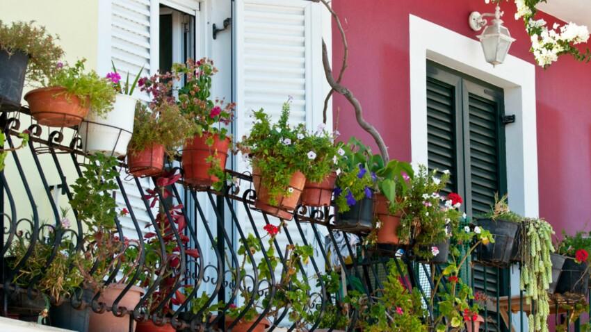 Fleurir son balcon : y a-t-il des règles à respecter ?