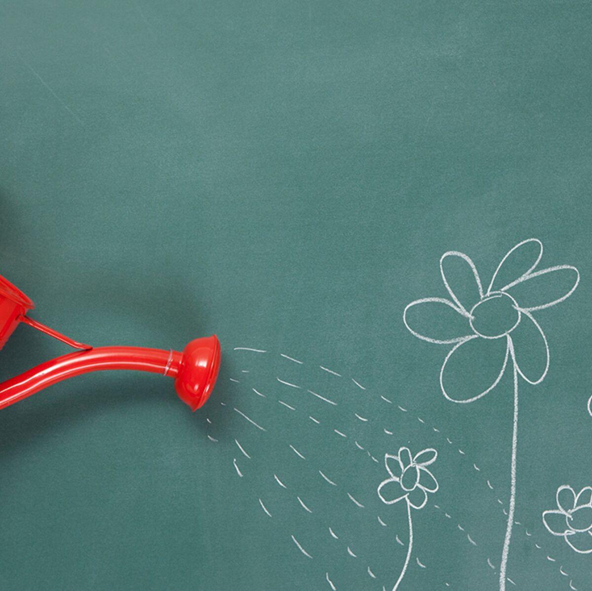 Comment Arroser Mes Plantes Pendant Les Vacances 4 solutions pour arroser ses plantes quand on est absent