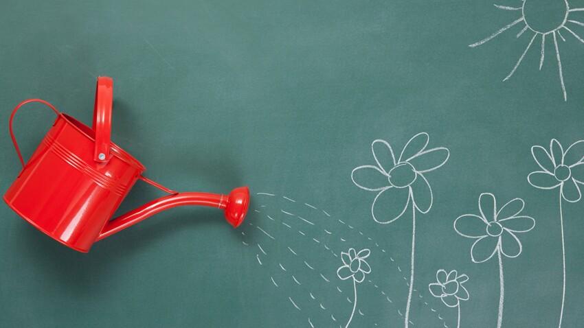 4 solutions pour arroser ses plantes quand on est absent