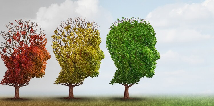 Alzheimer : les capacités cognitives des patients varient selon les saisons !