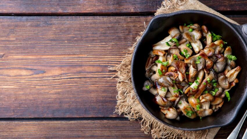 Des champignons pour prévenir les troubles de la mémoire