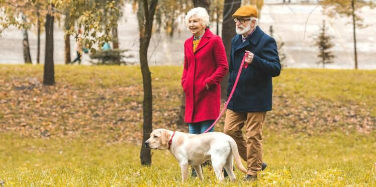 Attention aux fractures quand vous promenez votre chien