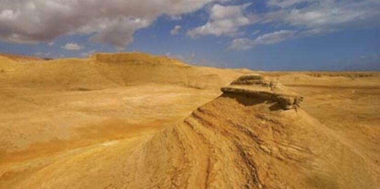 Lutter contre la désertification