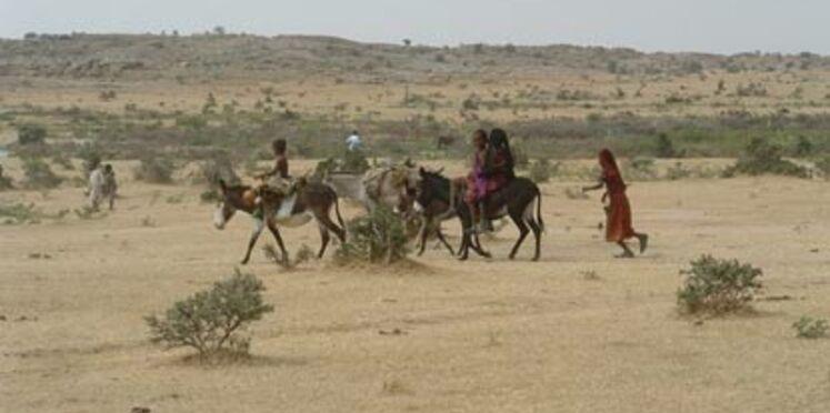Neuf français arrêtés au Tchad