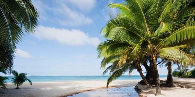 Une île paradisiaque à gagner, comment tomber amoureux... Les bonnes nouvelles de la semaine.