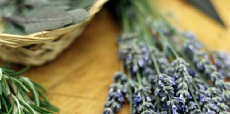 Herbes de provence made in China