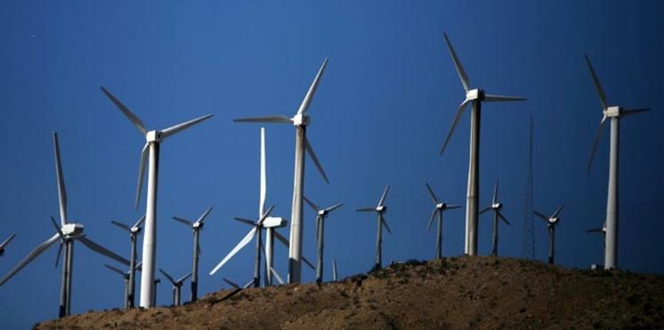Participez à la Journée mondiale du vent