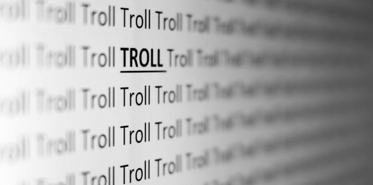 Qui se cache derrière les trolls sur Internet ?