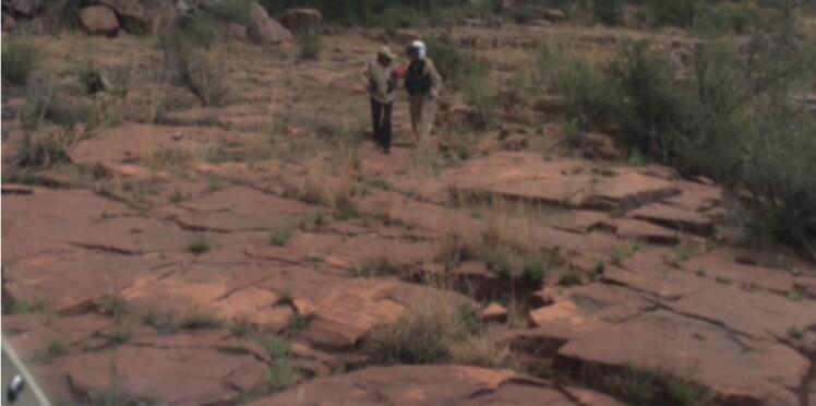 A 72 ans, elle survit neuf jours en plein désert