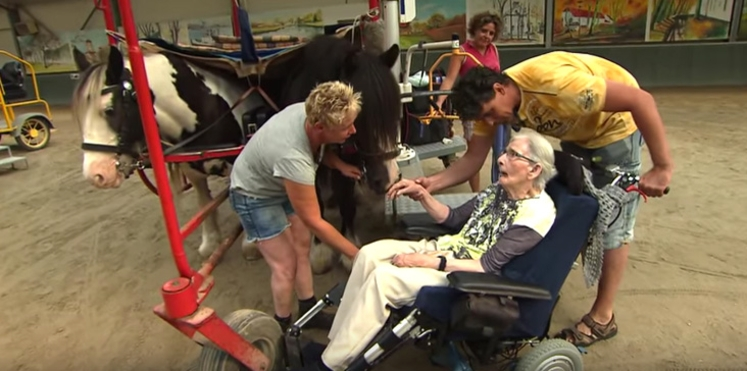 À 87 ans, elle réalise son rêve : remonter à cheval