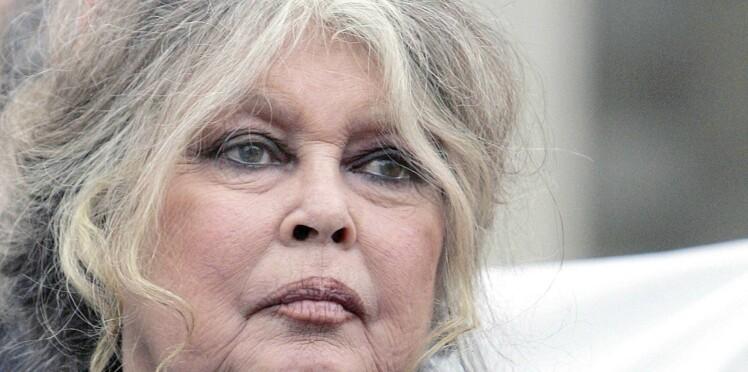 """Brigitte Bardot s'exprime sur le harcèlement sexuel : """"Beaucoup d'actrices font les allumeuses"""""""