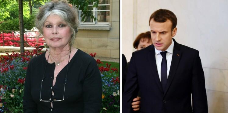 Brigitte Bardot, vexée par Emmanuel Macron, fustige son comportement « scandaleux et très déplacé »