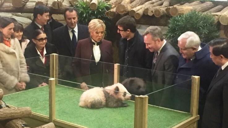 Photos - Brigitte Macron : découvrez le nom du bébé panda baptisé par la Première dame