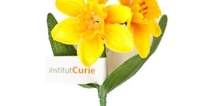 Contre le cancer, une jonquille pour Curie