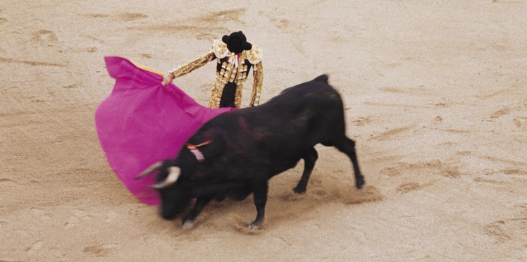 Vous êtes pour ou contre la corrida? Donnez-nous votre avis!