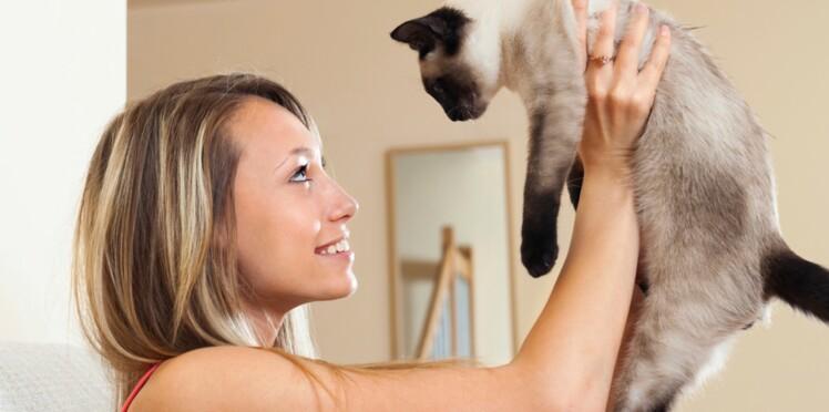 Elle retrouve les voleurs de son chat sur le Bon Coin