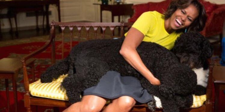 Famille Obama: l'un des chiens mord une jeune fille