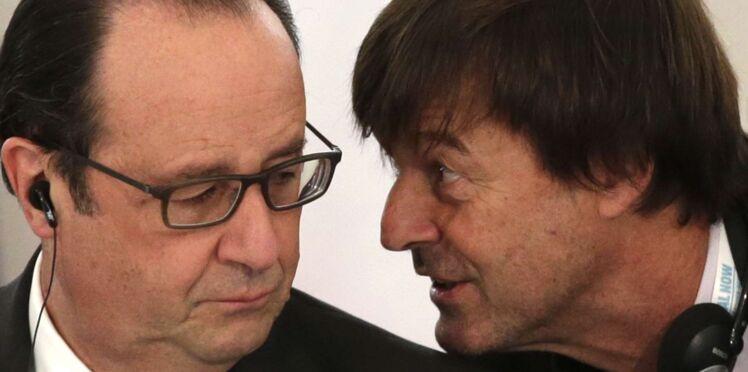 "François Hollande tacle Nicolas Hulot : ""Il n'y a que lui qui l'intéresse"""
