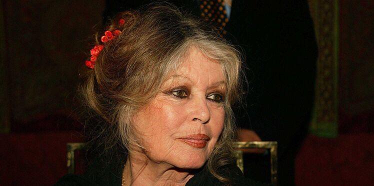 """Héritage de Johnny Hallyday : Brigitte Bardot """"choquée"""" et """"dégoutée"""" par l'affaire"""