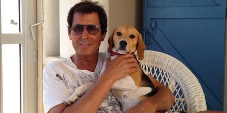 Holy perdue : lorsque Twitter se mobilise pour retrouver le chien de Max Guazzini