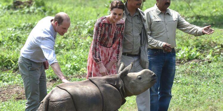Photos guimauve : Kate Middleton donne le biberon à un bébé rhinocéros