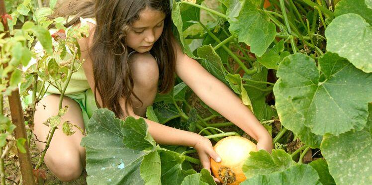 Jardins potagers : une nouvelle taxe qui pourrait être à payer dès 2017 ?