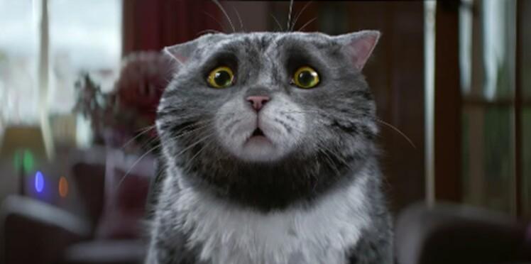 Mog, le chat qui sauvait Noël