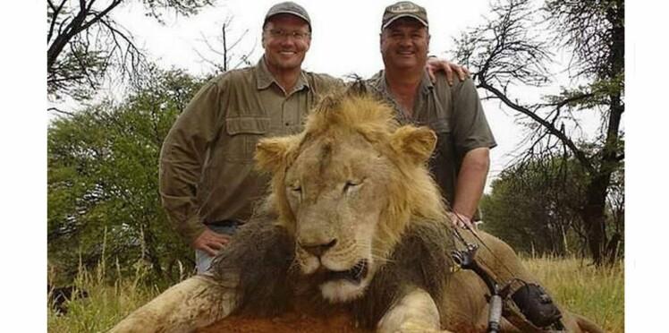 Qui est Walter Palmer, qui a sauvagement tué le lion Cecil au Zimbabwé ?