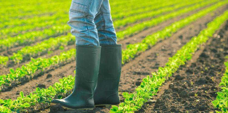 L'Europe veut mettre des pesticides dans les produits bio