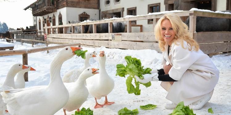 Photos: Pamela Anderson joue à la bergère pour la bonne cause