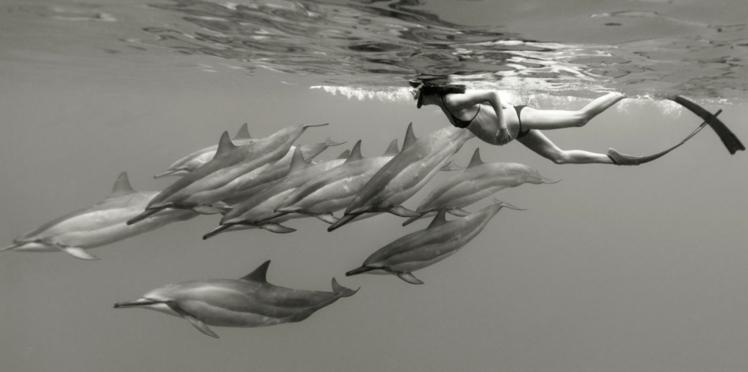 Photos : Leina Sato a vécu sa grossesse parmi les dauphins !