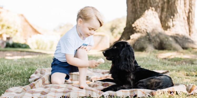 Prince George : pourquoi cette photo officielle fait polémique