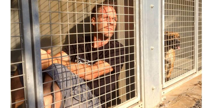 Cause animale : Rémi Gaillard s'enferme 24h/24 dans une cage de la SPA
