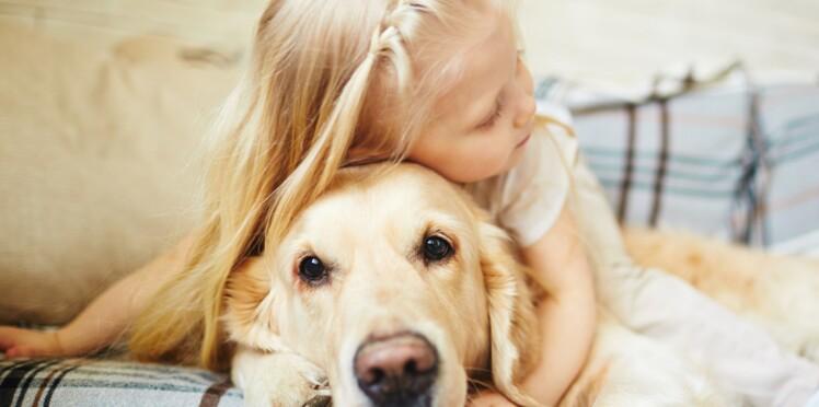 Vidéo : après l'avoir cherché partout, une mère retrouve son chien couché avec sa fillette