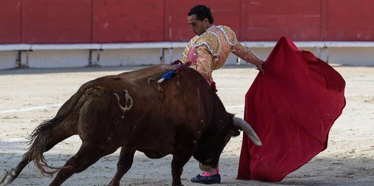 Un torero encorné lors d'une corrida dans les Landes est mort