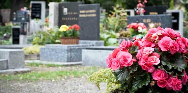 Des parents lancent un appel pour retrouver le lapin volé sur la tombe de leur bébé
