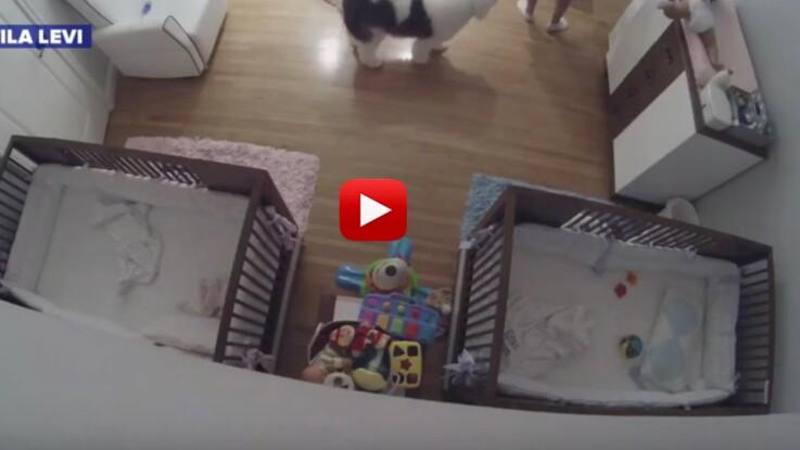 VIDEO – À 9 ans, il sauve la vie de son petit frère