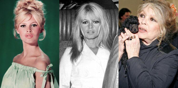 Brigitte Bardot fête ses 80 ans : l'album photo de sa vie