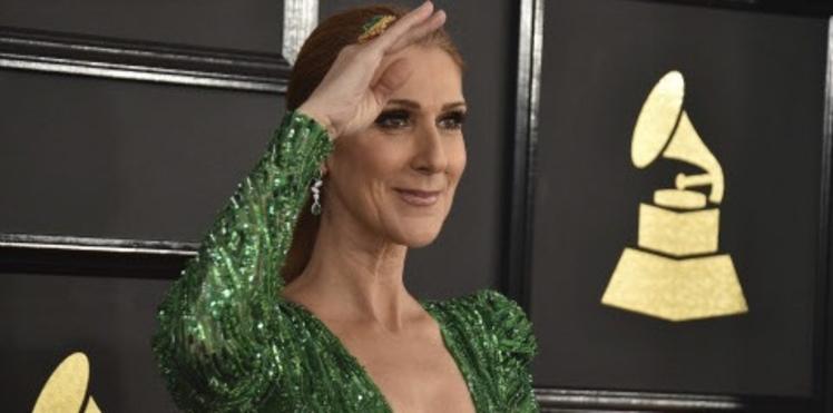Vidéo : Céline Dion scotchée par la voix d'un de ses fans