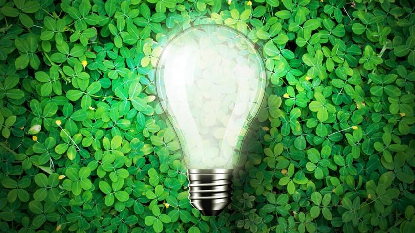 Énergies alternatives : que valent-elles ?