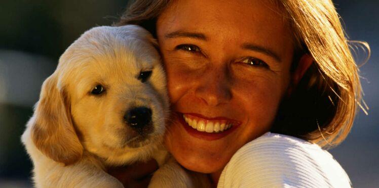 L'Europe facilite les vacances des animaux de compagnie
