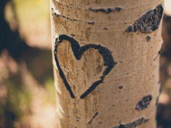 Retrouver son premier amour, est-ce une bonne idée ?