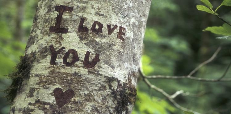50 manières de dire «je t'aime»