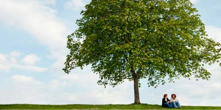 Vos plus belles rencontres : une fée sous un arbre