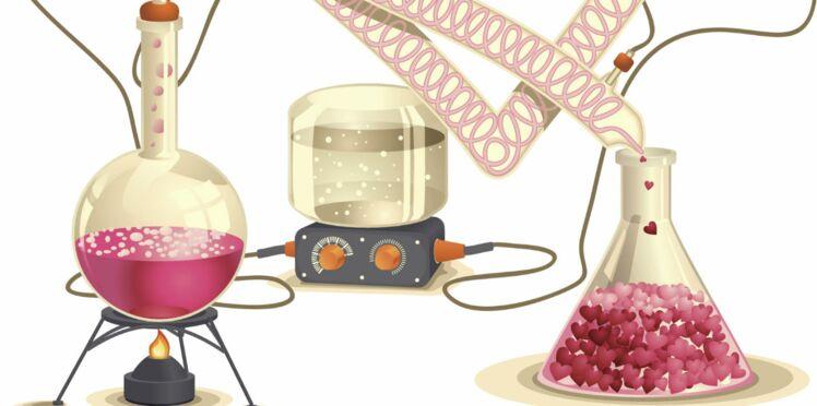 Phéromones : et si l'attirance physique n'était qu'une histoire de chimie ?